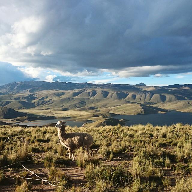 Viaje Perú Maravilla Ruta Agencia Itinerario
